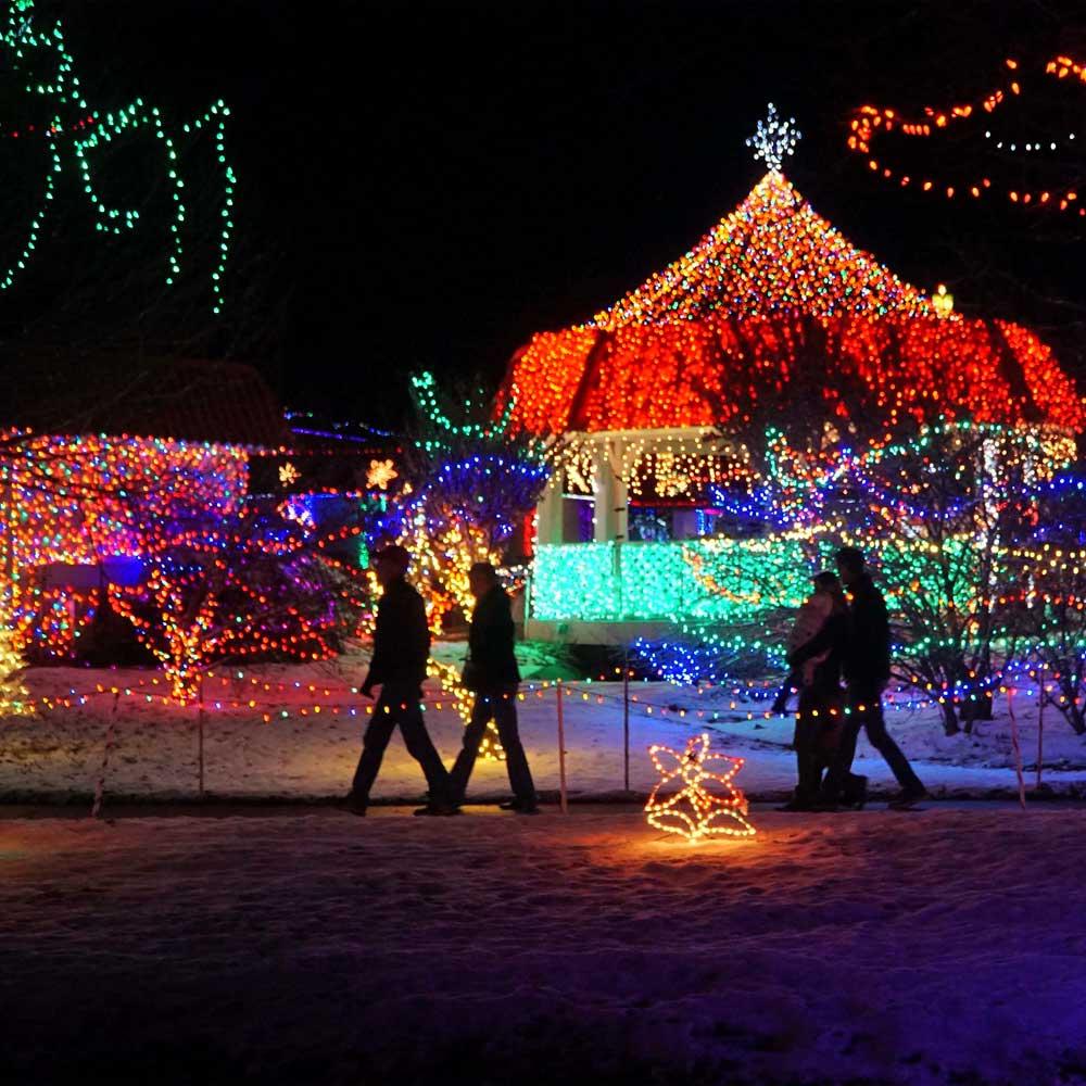 Rhema Christmas Lights 2019 Christmas Lights Celebration   Rhema